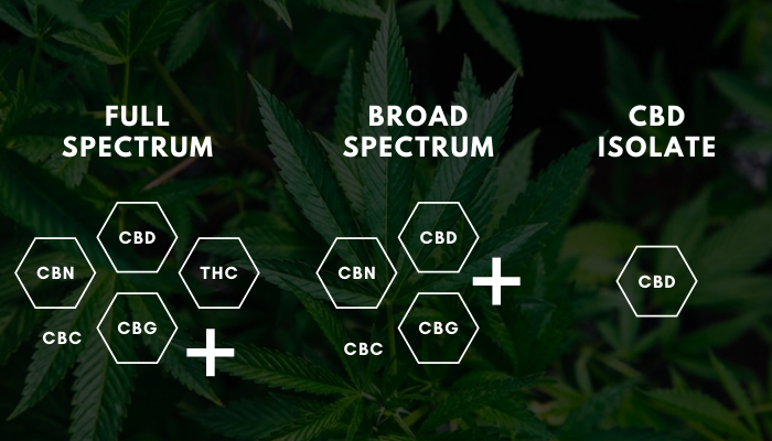 Why We Used Broad Spectrum CBD Tincture for Health