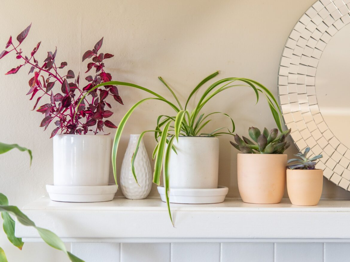6 Home Accessories To Improve Your Interiors
